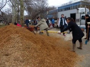 attacking the mulch mountain